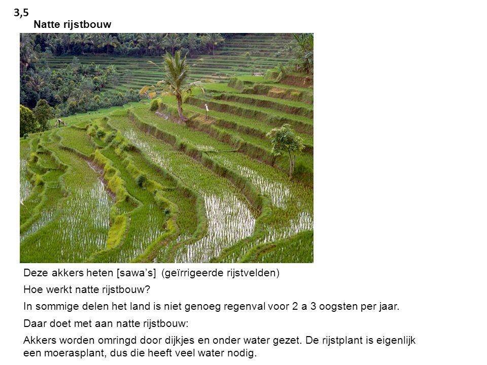 Deze akkers heten [sawa's] (geïrrigeerde rijstvelden) Hoe werkt natte rijstbouw.