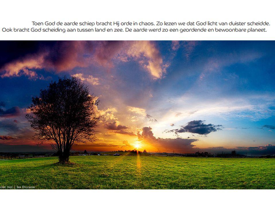 Wat doen wij met Gods Schepping …