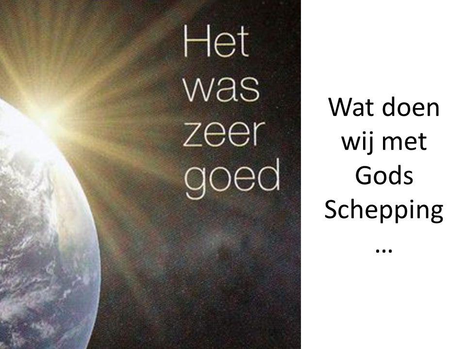 http://www.schooltv.nl/weekjournaal/onderw erpen/?nr=2205184&item=2562937