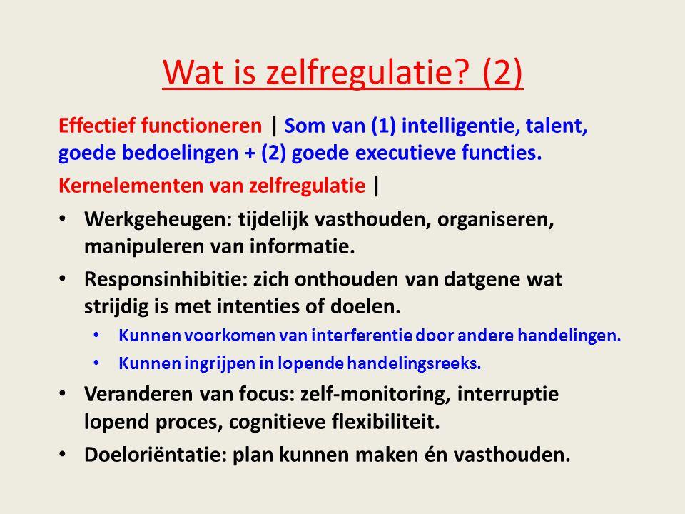 Wat is zelfregulatie.