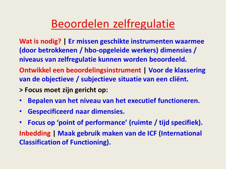Beoordelen zelfregulatie Wat is nodig.