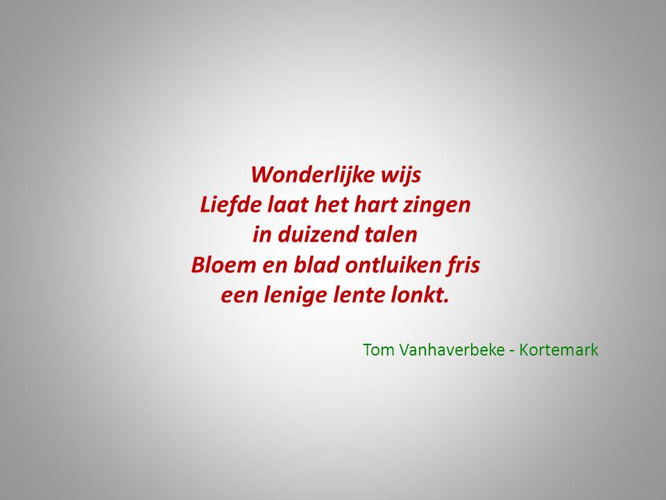 Wonderlijke wijs Liefde laat het hart zingen in duizend talen Bloem en blad ontluiken fris een lenige lente lonkt. Tom Vanhaverbeke - Kortemark