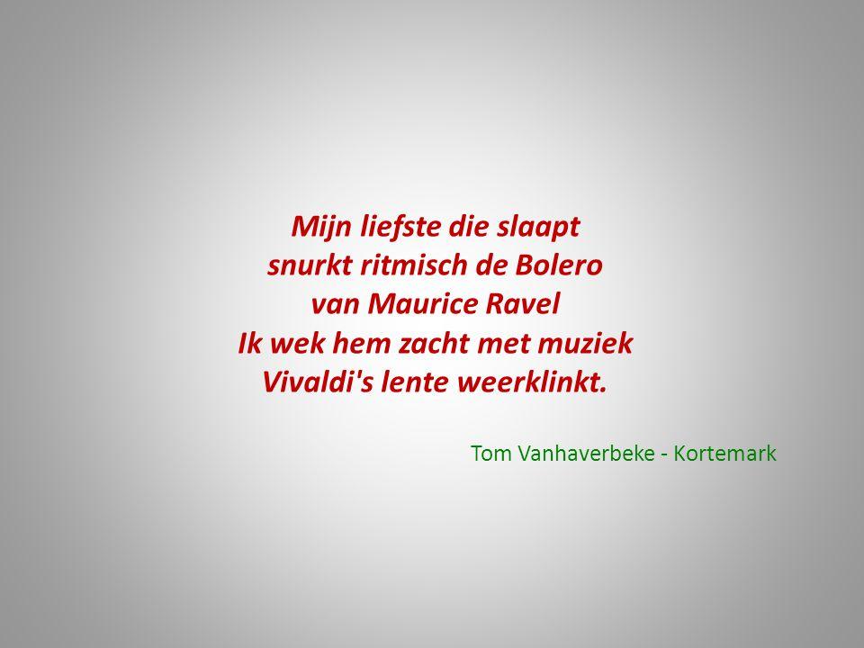 Mijn liefste die slaapt snurkt ritmisch de Bolero van Maurice Ravel Ik wek hem zacht met muziek Vivaldi's lente weerklinkt. Tom Vanhaverbeke - Kortema