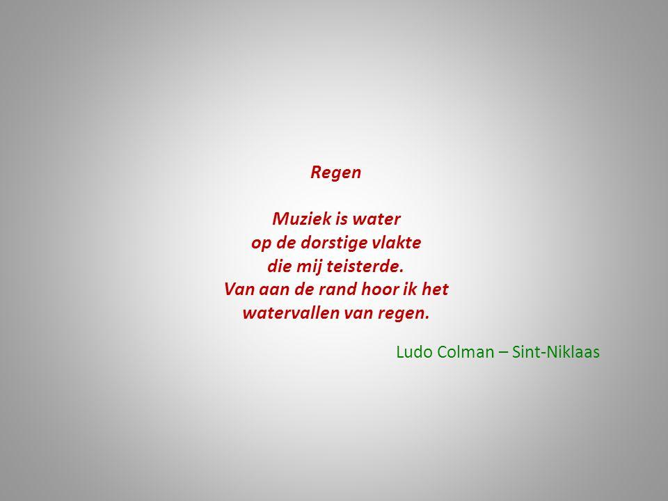 Regen Muziek is water op de dorstige vlakte die mij teisterde. Van aan de rand hoor ik het watervallen van regen. Ludo Colman – Sint-Niklaas