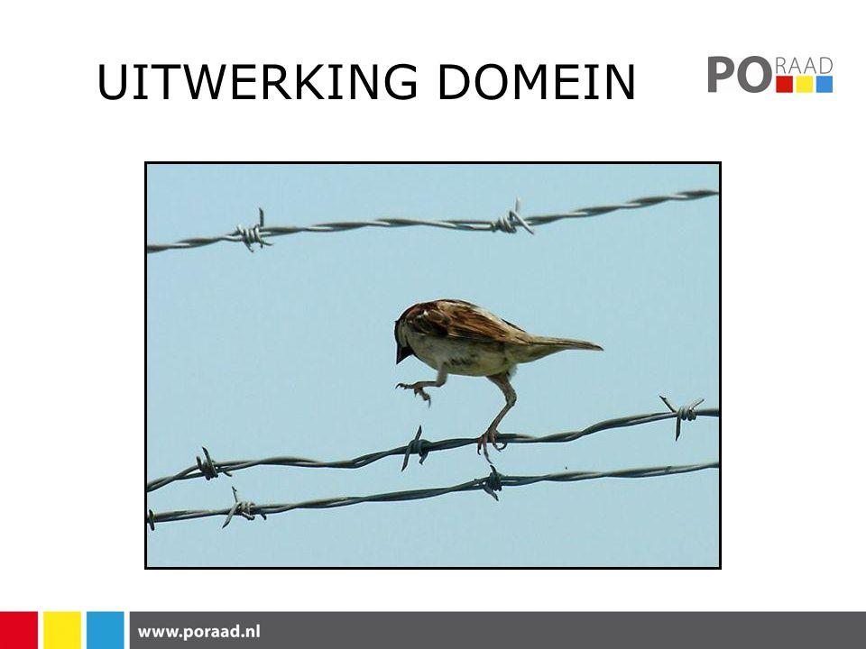 UITWERKING DOMEIN