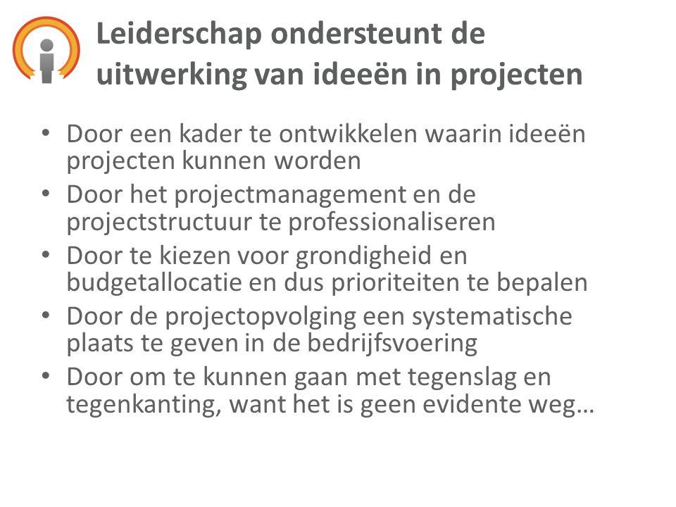 • Door een kader te ontwikkelen waarin ideeën projecten kunnen worden • Door het projectmanagement en de projectstructuur te professionaliseren • Door