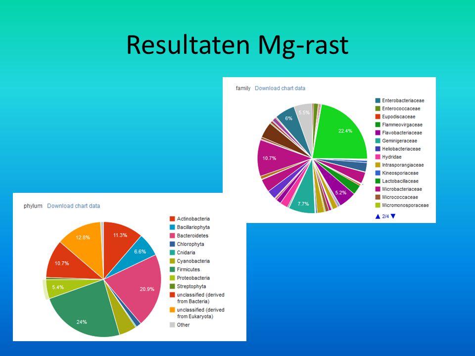 Resultaten Mg-rast