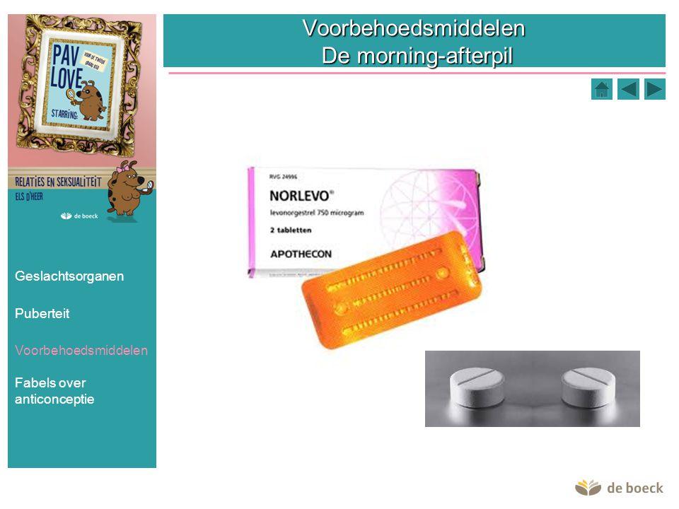 Voorbehoedsmiddelen De morning-afterpil Geslachtsorganen Puberteit Voorbehoedsmiddelen Fabels over anticonceptie