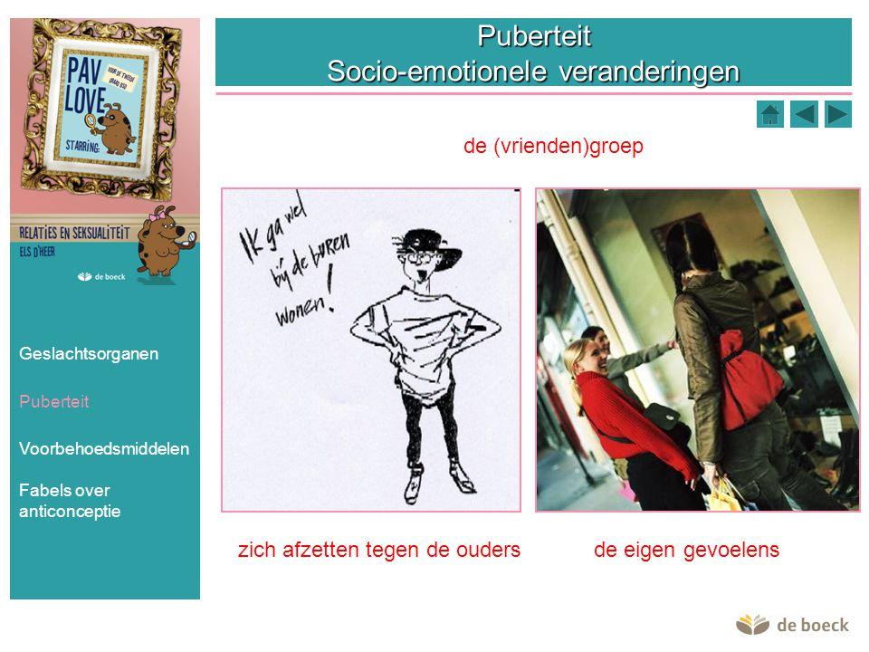 Puberteit Socio-emotionele veranderingen de (vrienden)groep zich afzetten tegen de oudersde eigen gevoelens Geslachtsorganen Puberteit Voorbehoedsmidd