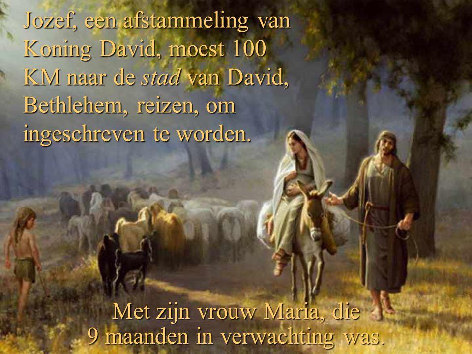 Jozef, een afstammeling van Koning David, moest 100 KM naar de stad van David, Bethlehem, reizen, om ingeschreven te worden.