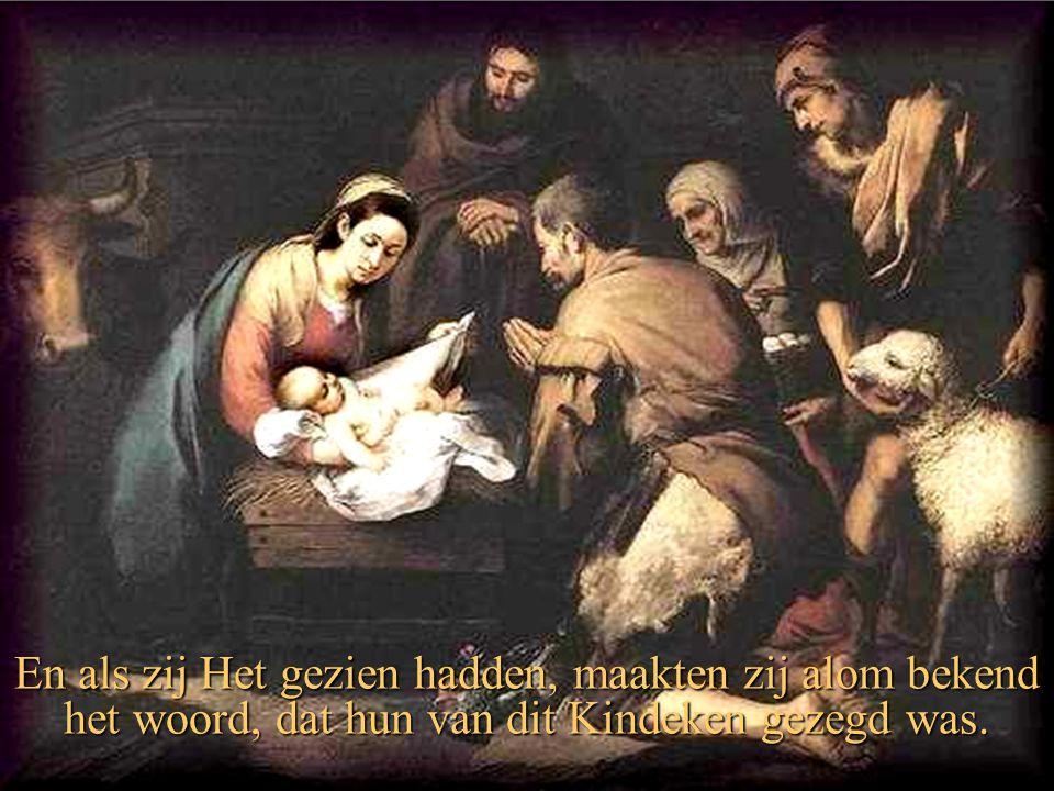 En als zij Het gezien hadden, maakten zij alom bekend het woord, dat hun van dit Kindeken gezegd was.