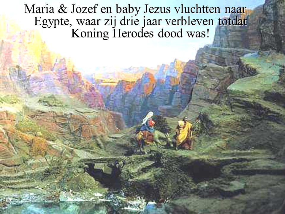 Maria & Jozef en baby Jezus vluchtten naar Egypte, waar zij drie jaar verbleven totdat Koning Herodes dood was!