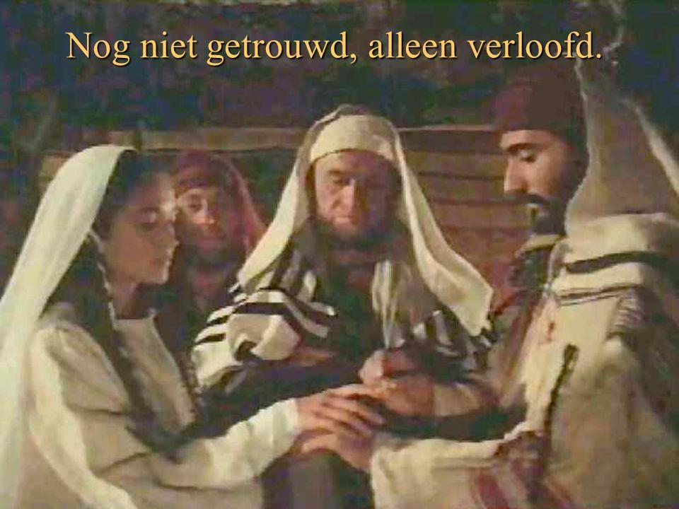 Jezus werd niet in een paleis geboren,