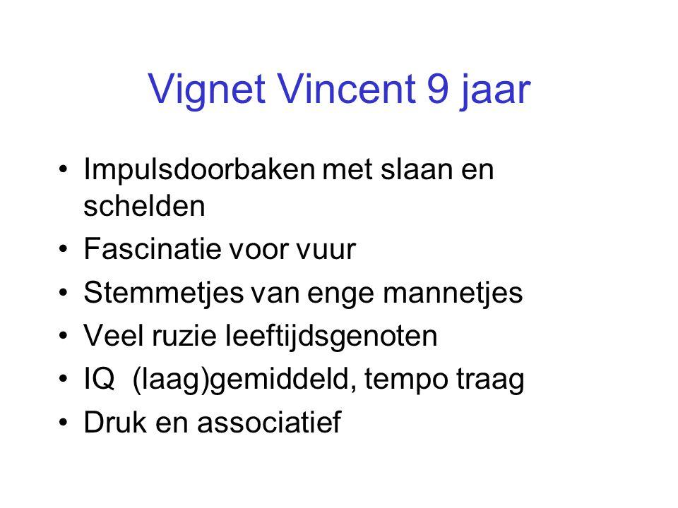 Vignet Vincent 9 jaar •Impulsdoorbaken met slaan en schelden •Fascinatie voor vuur •Stemmetjes van enge mannetjes •Veel ruzie leeftijdsgenoten •IQ (la