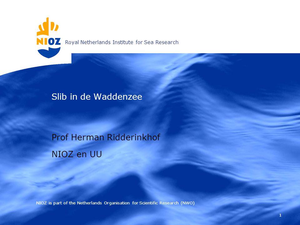 12 Langjarige NIOZ metingen Continu (akoestische) metingen vanaf TESO veerboot den Helder – Texel + metingen vanaf NIOZ jetty jetty
