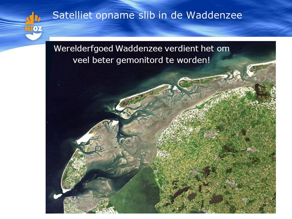 Werelderfgoed Waddenzee verdient het om veel beter gemonitord te worden! Satelliet opname slib in de Waddenzee