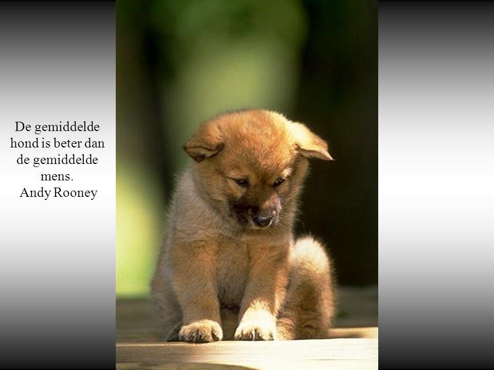 Als honden niet naar de hemel gaan, wil ik na mijn dood naar de plaats waar ze wél heen gaan. Will Rogers