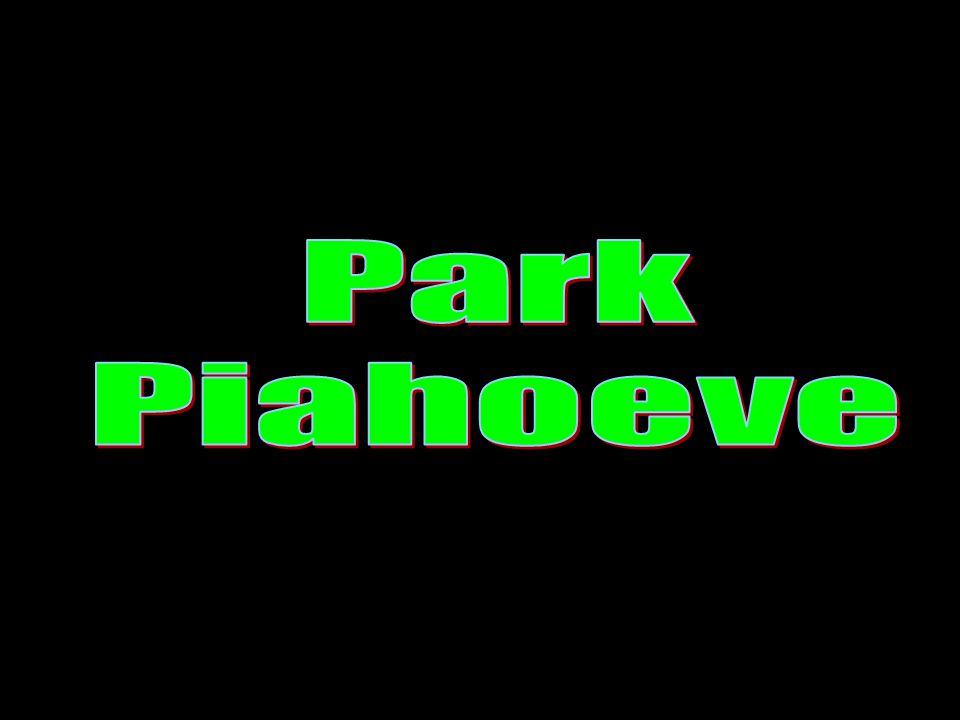 Park Piahoeve is een onderdeel van Stichting St.Anna.