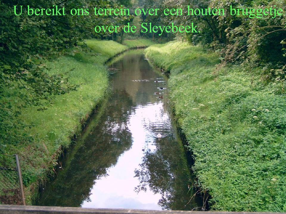 U bereikt ons terrein over een houten bruggetje over de Sleyebeek.