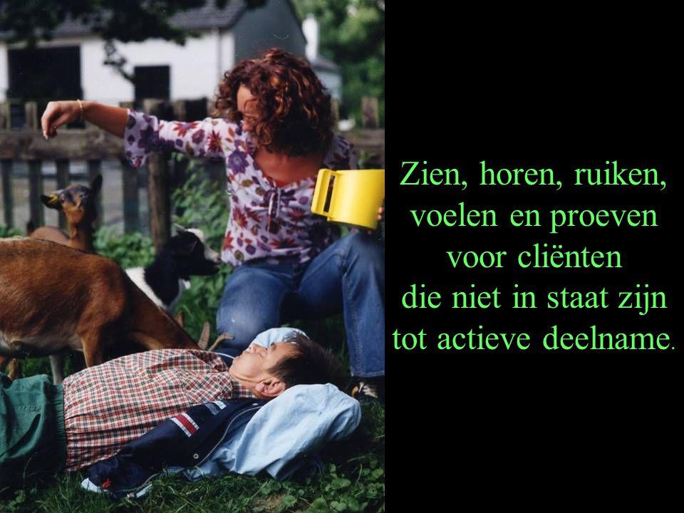 Zien, horen, ruiken, voelen en proeven voor cliënten die niet in staat zijn tot actieve deelname.