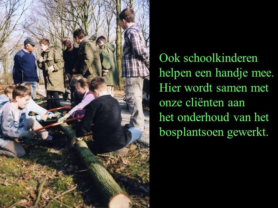 Ook schoolkinderen helpen een handje mee. Hier wordt samen met onze cliënten aan het onderhoud van het bosplantsoen gewerkt.