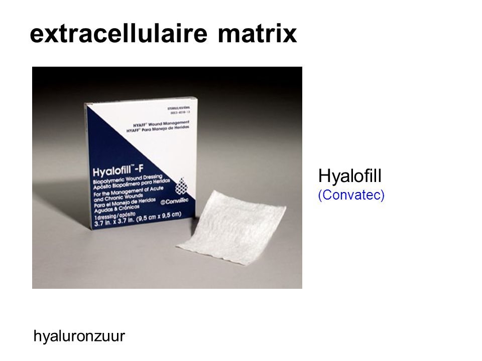 extracellulaire matrix hyaluronzuur Hyalofill (Convatec)