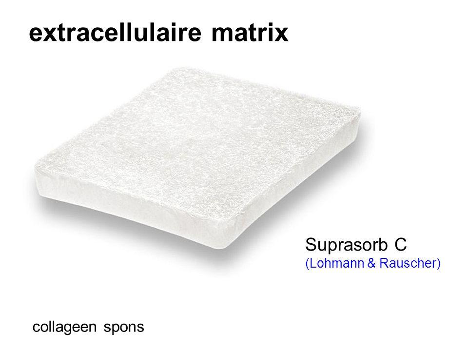 extracellulaire matrix collageen spons Suprasorb C (Lohmann & Rauscher)