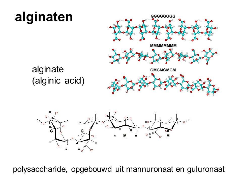 alginaten polysaccharide, opgebouwd uit mannuronaat en guluronaat alginate (alginic acid)