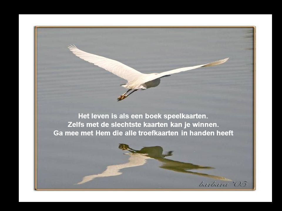 God kan de wind van richting doen veranderen, Het is aan de mens om de zeilen bij stellen.