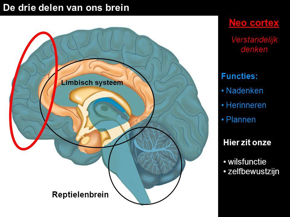 De drie delen van ons brein Reptielenbrein Limbisch systeem Neo cortex Verstandelijk denken Functies: • Nadenken • Herinneren • Plannen Hier zit onze