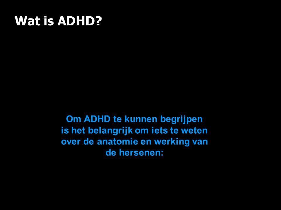 Wat is ADHD? Om ADHD te kunnen begrijpen is het belangrijk om iets te weten over de anatomie en werking van de hersenen: