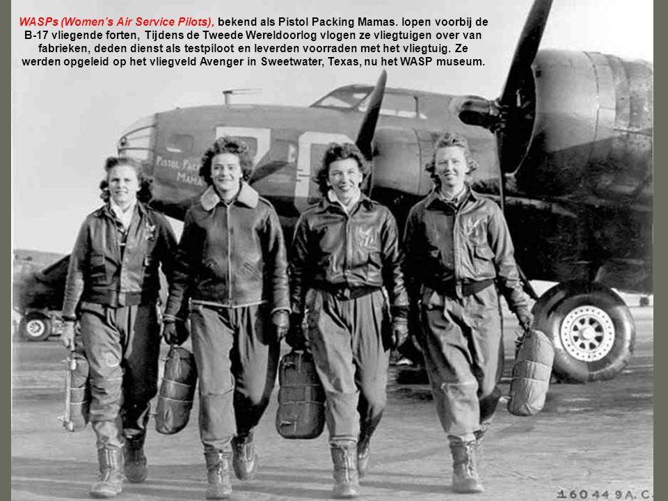 De B-24 Liberator is het meest talrijk geproduceerde Amerikaanse gevechtsvliegtuig van de Tweede Wereldoorlog. Omdat het gangpad van de achterzijde na