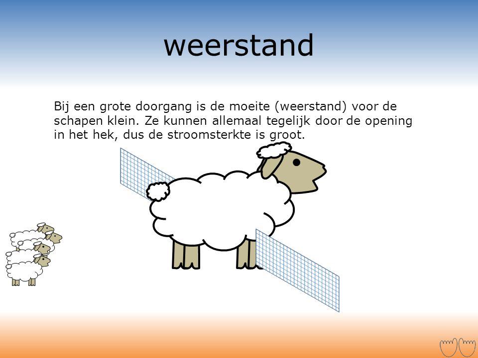 weerstand Bij een grote doorgang is de moeite (weerstand) voor de schapen klein. Ze kunnen allemaal tegelijk door de opening in het hek, dus de stroom
