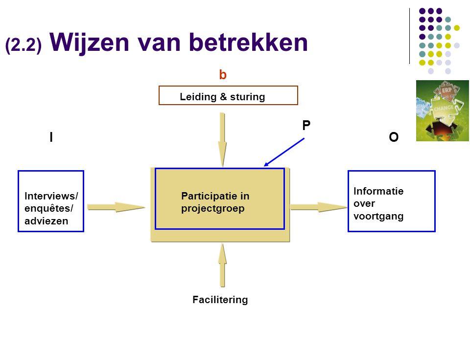 Leiding & sturing Interviews/ enquêtes/ adviezen Informatie over voortgang Facilitering Participatie in projectgroep (2.2) Wijzen van betrekken IO P b