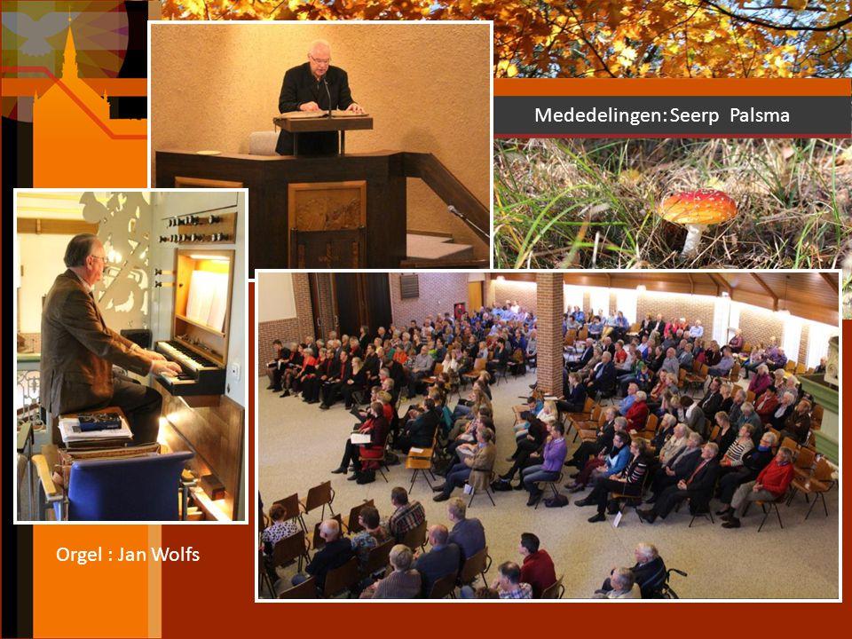 Orgel : Jan Wolfs Mededelingen: Seerp Palsma