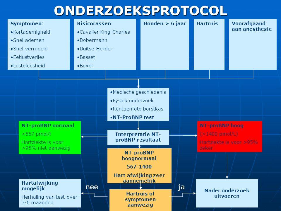 Interpretatie NT- proBNP resultaat Symptomen: •Kortademigheid •Snel ademen •Snel vermoeid •Eetlustverlies •Lusteloosheid ONDERZOEKSPROTOCOL •Medische geschiedenis •Fysiek onderzoek •Röntgenfoto borstkas •NT-ProBNP test NT-proBNP normaal <567 pmol/l Hartziekte is voor >95% niet aanwezig NT-proBNP hoog (>1400 pmol/L) Hartziekte is voor >95% zeker NT-proBNP hoognormaal 567-1400 Hart afwijking zeer aannemelijk Hartruis of symptomen aanwezig Hartafwijking mogelijk Herhaling van test over 3-6 maanden nee Nader onderzoek uitvoeren ja Risicorassen: •Cavalier King Charles •Dobermann •Duitse Herder •Basset •Boxer Honden > 6 jaarHartruisVóórafgaand aan anesthesie Symptomen: •Kortademigheid •Snel ademen •Snel vermoeid •Eetlustverlies •Lusteloosheid Symptomen: •Kortademigheid •Snel ademen •Snel vermoeid •Eetlustverlies •Lusteloosheid