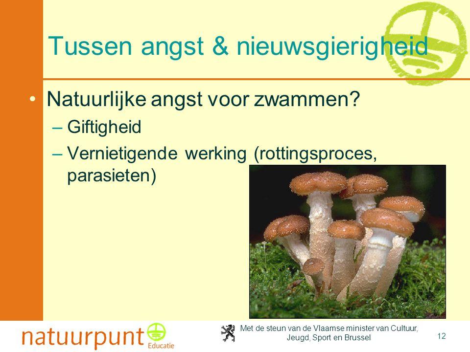 Met de steun van de Vlaamse minister van Cultuur, Jeugd, Sport en Brussel 12 Tussen angst & nieuwsgierigheid •Natuurlijke angst voor zwammen? –Giftigh