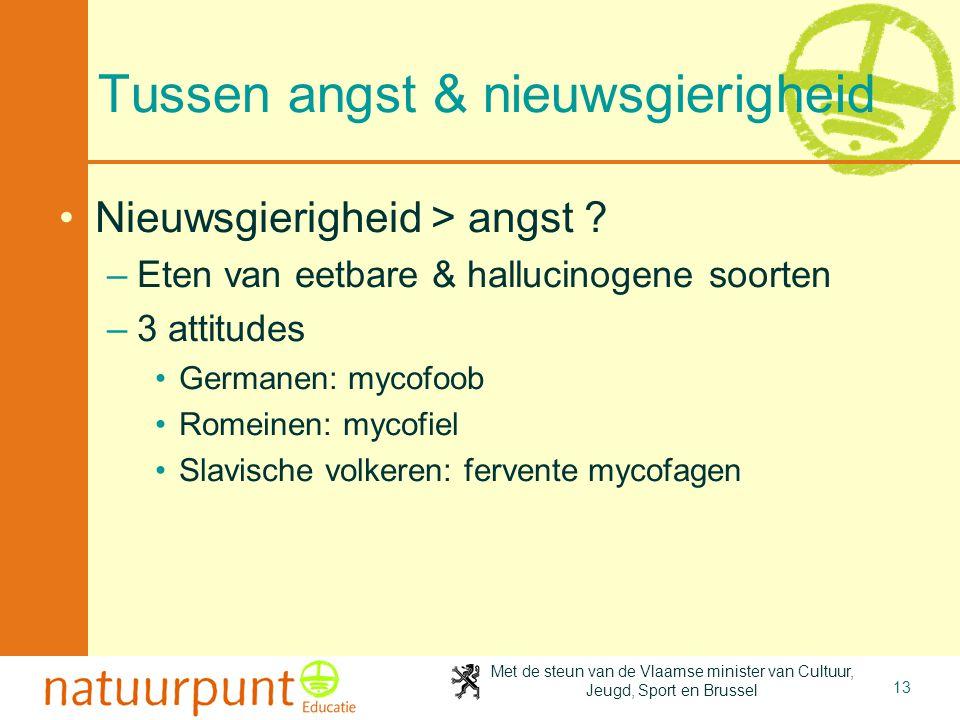 Met de steun van de Vlaamse minister van Cultuur, Jeugd, Sport en Brussel 13 Tussen angst & nieuwsgierigheid •Nieuwsgierigheid > angst ? –Eten van eet