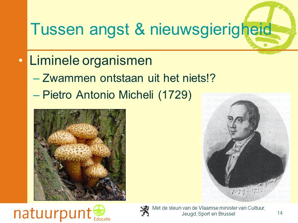 Met de steun van de Vlaamse minister van Cultuur, Jeugd, Sport en Brussel 14 Tussen angst & nieuwsgierigheid •Liminele organismen –Zwammen ontstaan ui