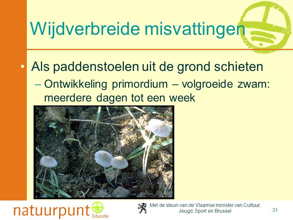 Met de steun van de Vlaamse minister van Cultuur, Jeugd, Sport en Brussel 31 Wijdverbreide misvattingen •Als paddenstoelen uit de grond schieten –Ontw