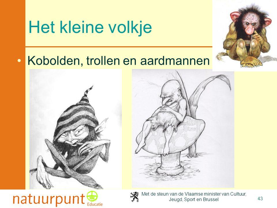 Met de steun van de Vlaamse minister van Cultuur, Jeugd, Sport en Brussel 43 Het kleine volkje •Kobolden, trollen en aardmannen