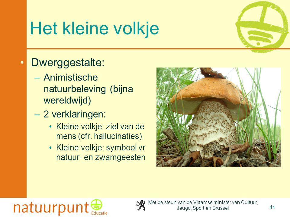 Met de steun van de Vlaamse minister van Cultuur, Jeugd, Sport en Brussel 44 Het kleine volkje •Dwerggestalte: –Animistische natuurbeleving (bijna wer