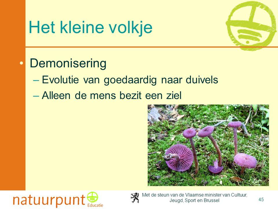 Met de steun van de Vlaamse minister van Cultuur, Jeugd, Sport en Brussel 45 Het kleine volkje •Demonisering –Evolutie van goedaardig naar duivels –Al