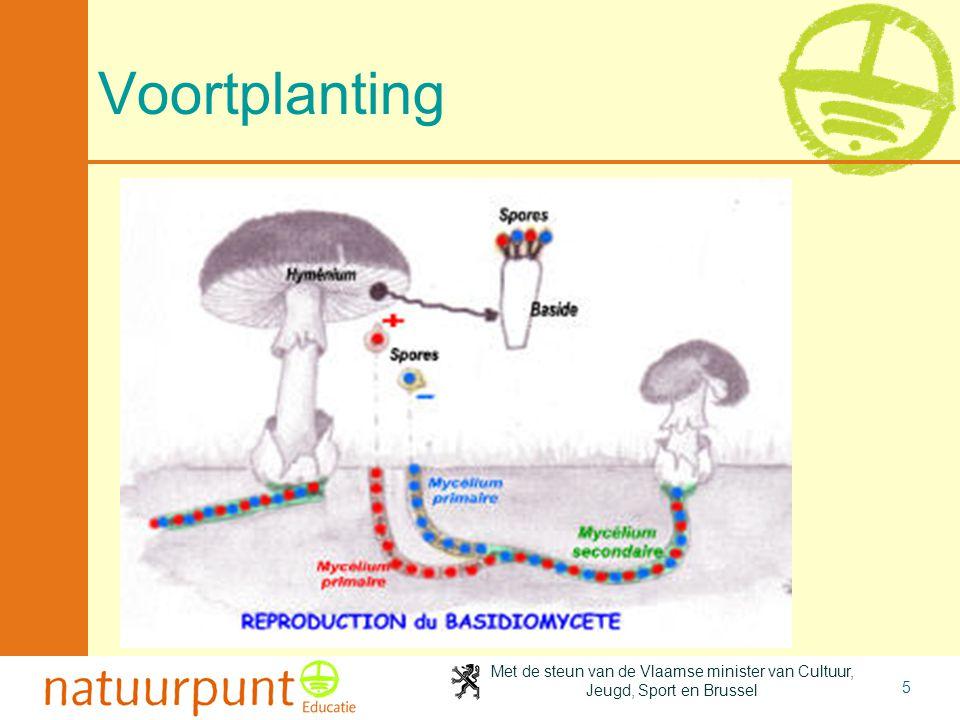 Met de steun van de Vlaamse minister van Cultuur, Jeugd, Sport en Brussel 5 Voortplanting