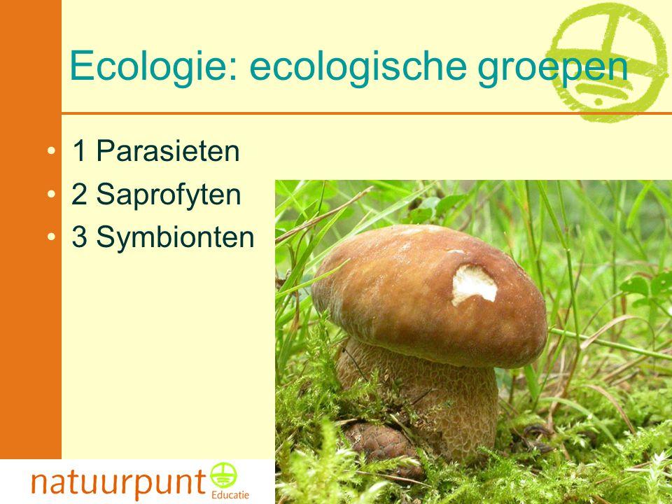 Met de steun van de Vlaamse minister van Cultuur, Jeugd, Sport en Brussel 6 Ecologie: ecologische groepen •1 Parasieten •2 Saprofyten •3 Symbionten