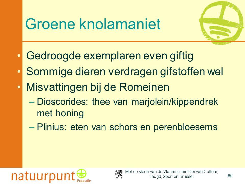 Met de steun van de Vlaamse minister van Cultuur, Jeugd, Sport en Brussel 60 Groene knolamaniet •Gedroogde exemplaren even giftig •Sommige dieren verd