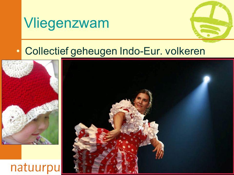 Met de steun van de Vlaamse minister van Cultuur, Jeugd, Sport en Brussel 67 Vliegenzwam •Collectief geheugen Indo-Eur. volkeren