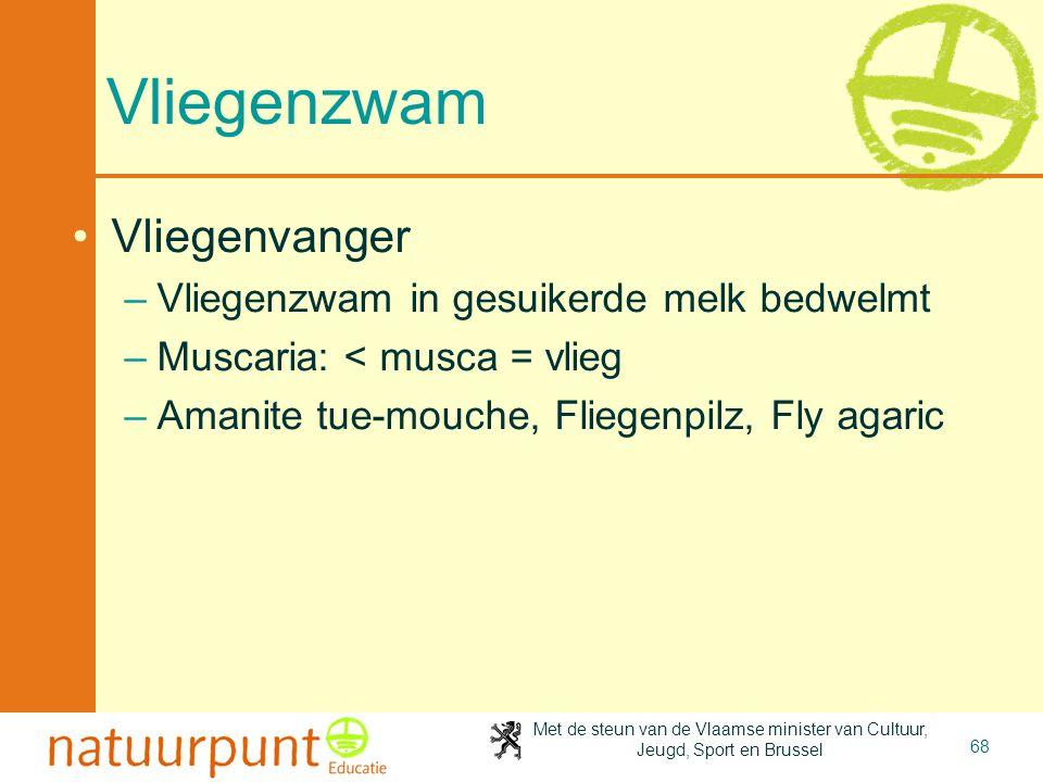 Met de steun van de Vlaamse minister van Cultuur, Jeugd, Sport en Brussel 68 Vliegenzwam •Vliegenvanger –Vliegenzwam in gesuikerde melk bedwelmt –Musc