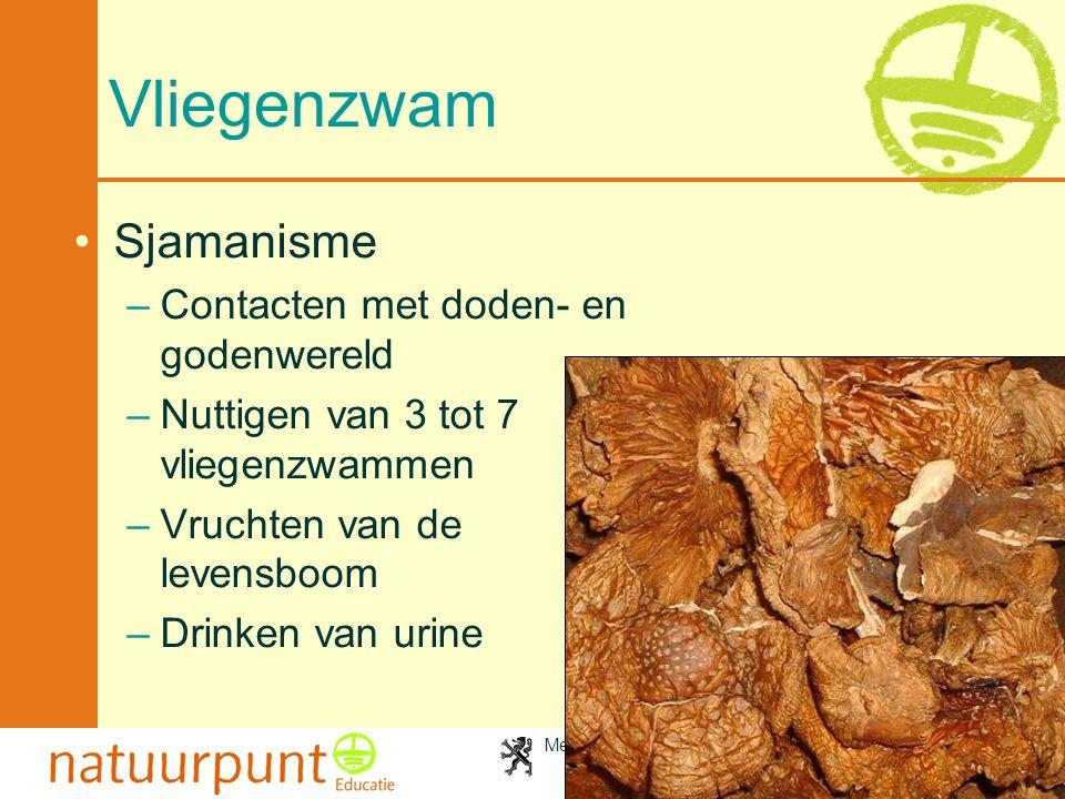 Met de steun van de Vlaamse minister van Cultuur, Jeugd, Sport en Brussel 71 Vliegenzwam •Sjamanisme –Contacten met doden- en godenwereld –Nuttigen va
