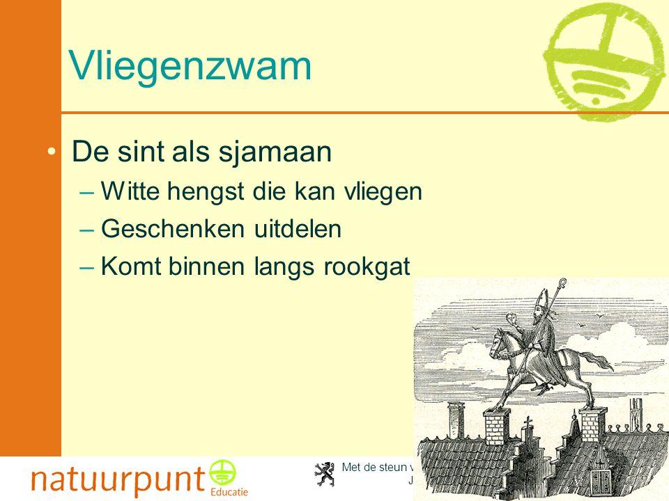 Met de steun van de Vlaamse minister van Cultuur, Jeugd, Sport en Brussel 75 Vliegenzwam •De sint als sjamaan –Witte hengst die kan vliegen –Geschenke